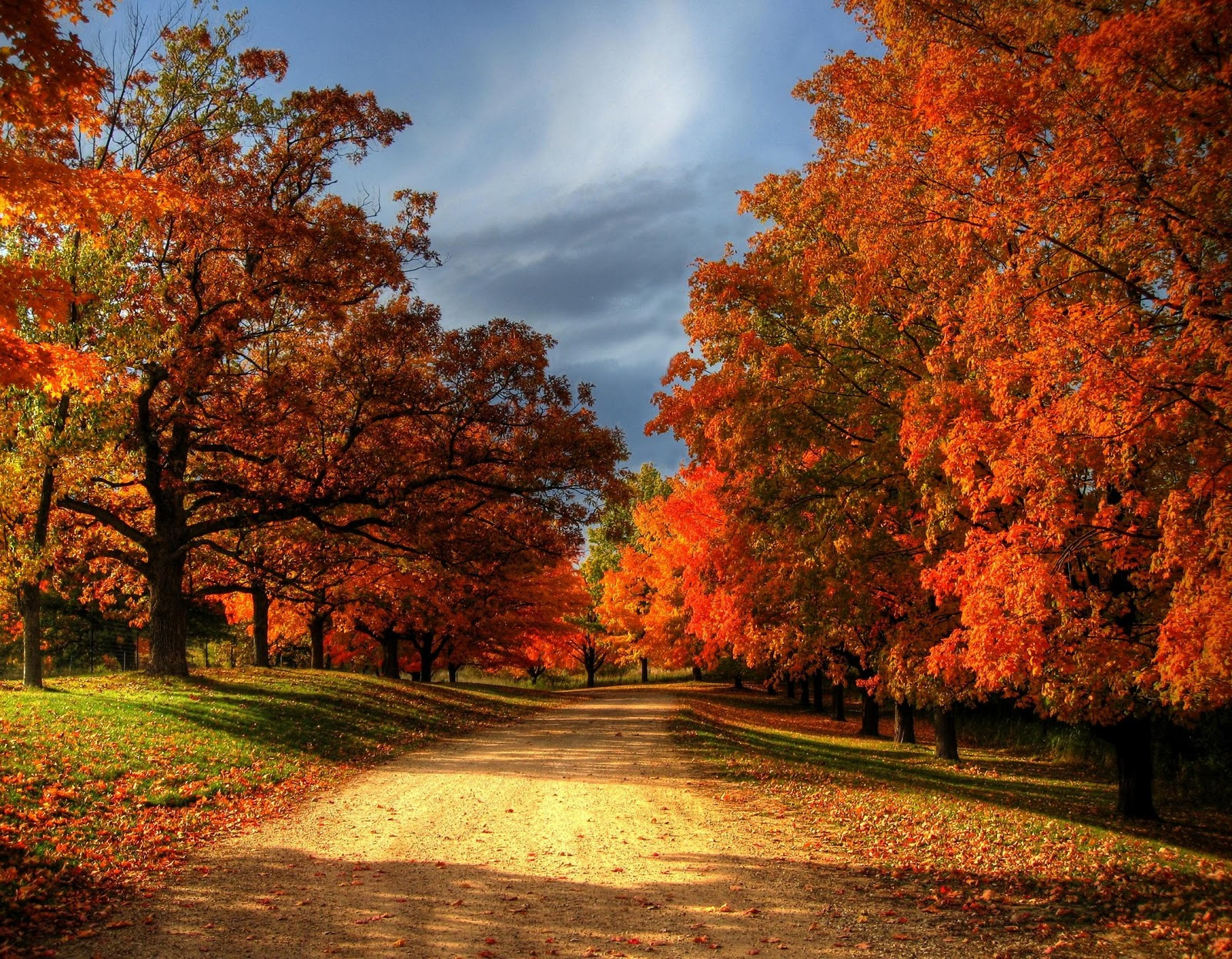 Why Fall Photographs L...